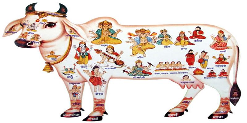 Ekadashi - The Day of Fasting | BharatMarg com