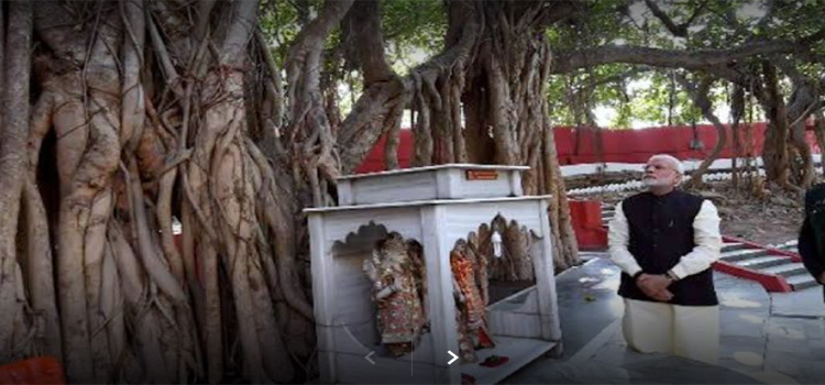Darshan of Akshayavat in Prayagraj – The Indestructible Banyan Tree