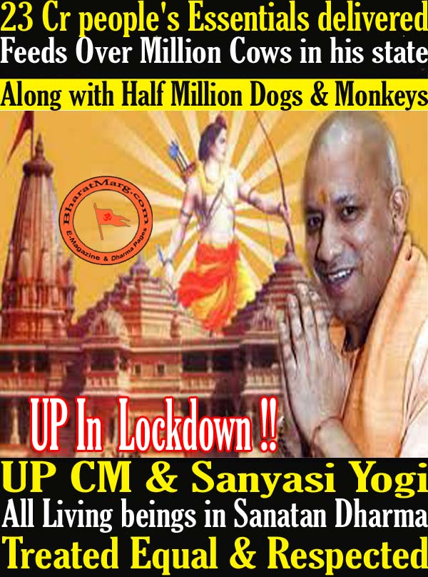 All living beings are treated equal & respected in Sanatan Dharma !!