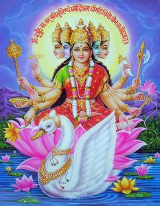 Gayatri Homa(m) for Safety & Well being of Defence & Emergency Personals !!