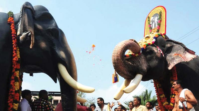 Why elephant is worshiped in Guruvayur?