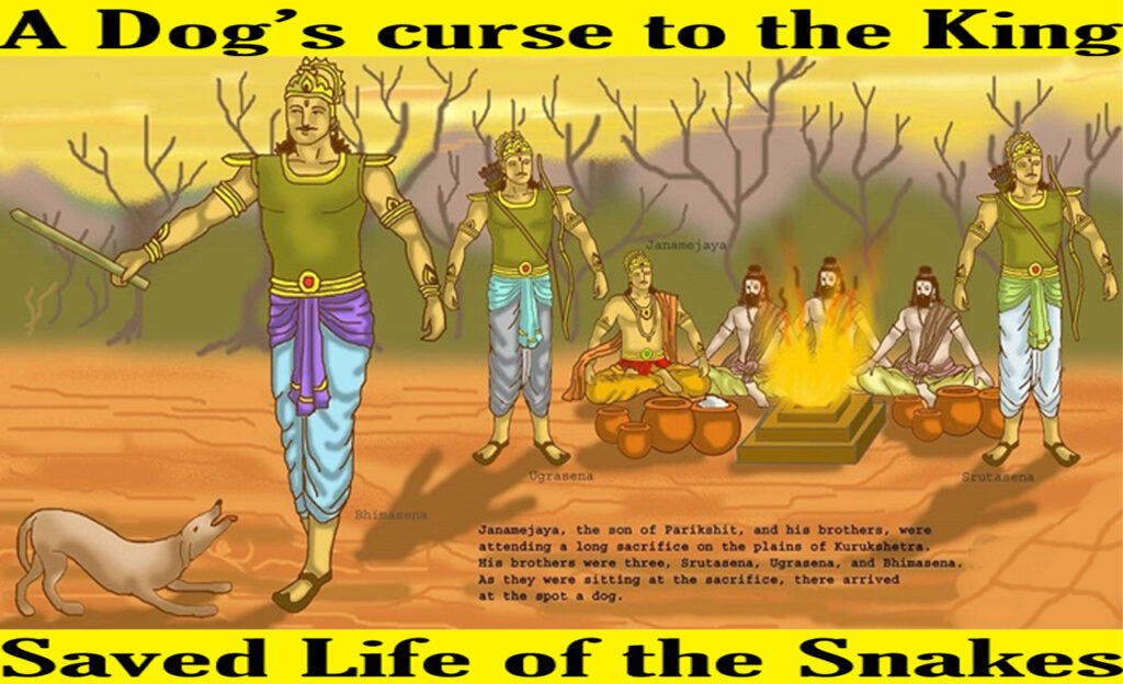 King who was cursed by Dog – Game Over !!