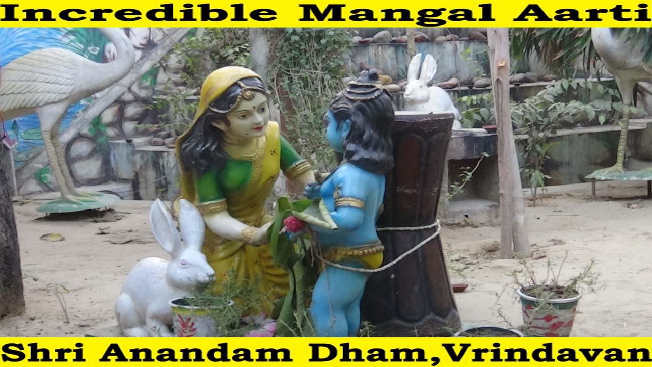 Mangal Aarti at Shri Anandam Dham-Vrindavan