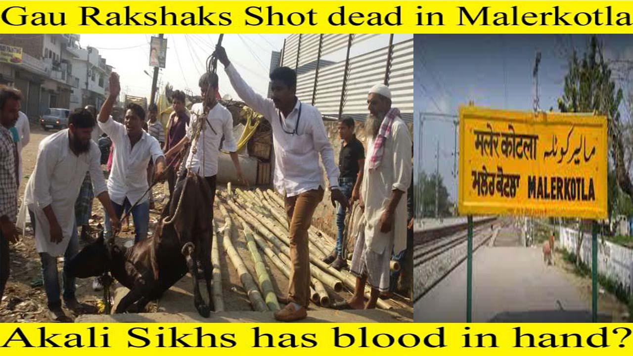 Gau rakshaks shot dead in Malerkotla – Punjab !!